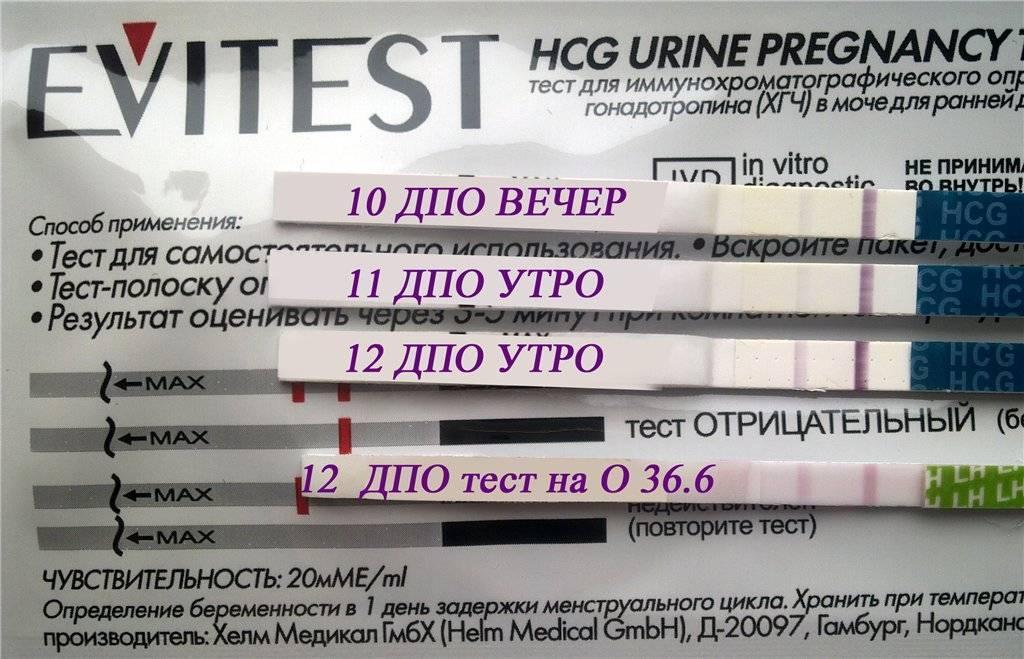 Тест на беременность через двое суток после предполагаемой имплантации - вопрос гинекологу - 03 онлайн