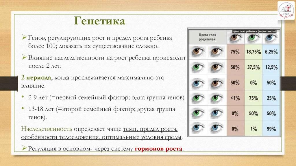 """Как узнать цвет глаз будущего ребёнка - """"здоровое око"""""""