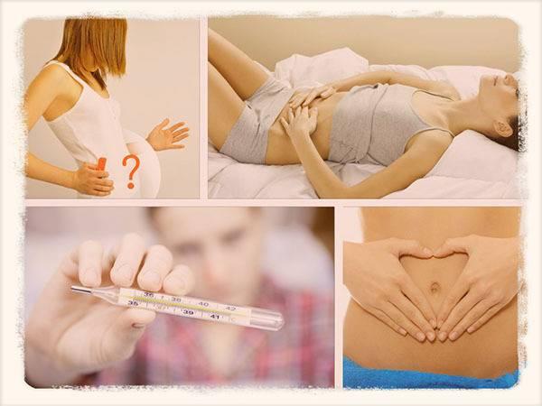 Диагностика беременности - определение на ранних сроках