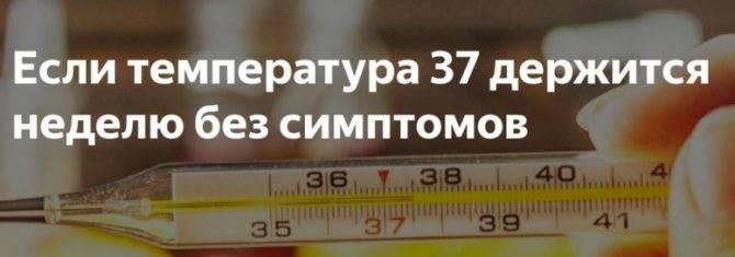 Температура 37,7 °c