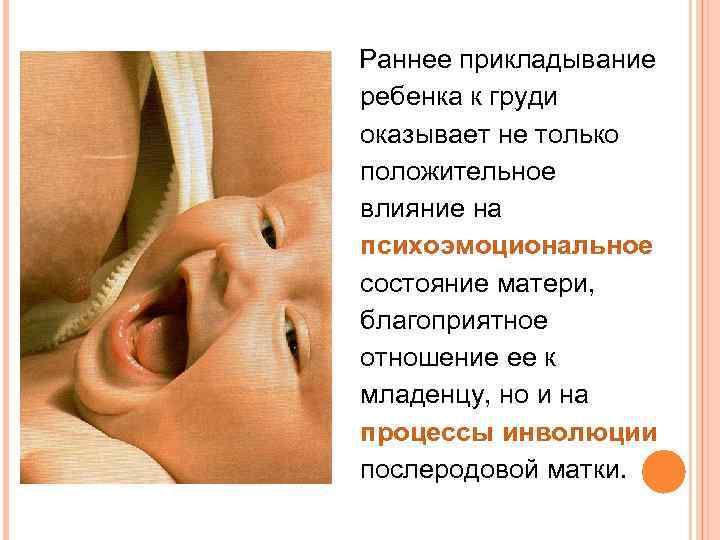 Как правильно кормить новорожденного грудным молоком: первое прикладывание, удобные позы, решение основных проблем