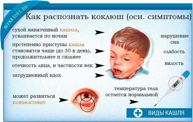 Коклюш. симптомы, диагностика, лечение