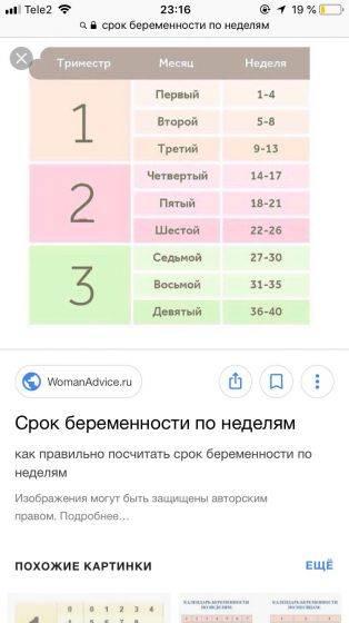 Калькулятор беременности - точный расчет по дням и неделям   календарь беременности