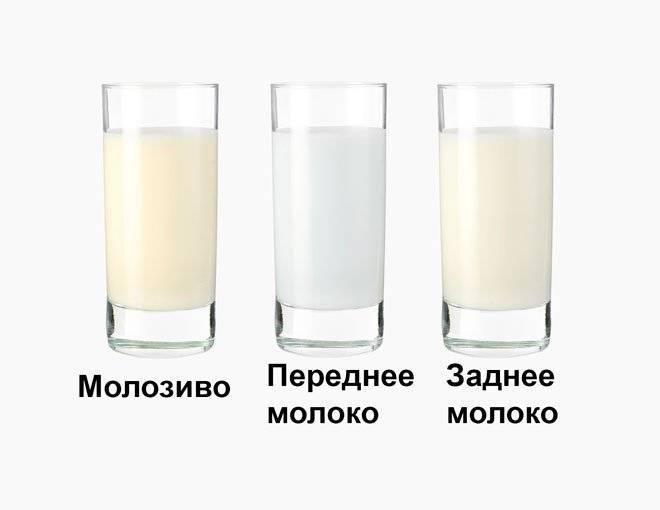 Почему грудное молоко стало прозрачное, стоит ли беспокоиться?