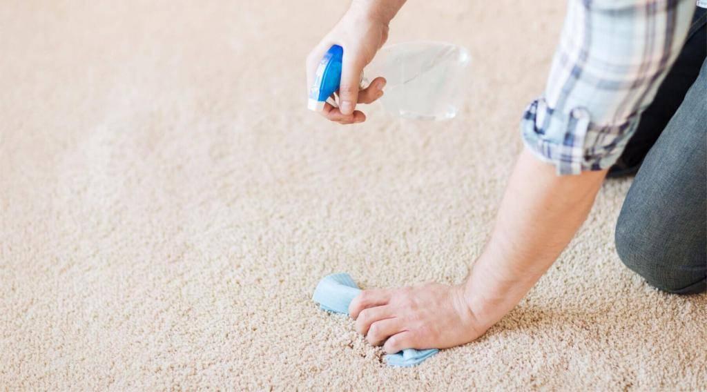 Как убрать запах мочи с ковра в домашних условиях: спасаем ситуацию, если собака написала на палас