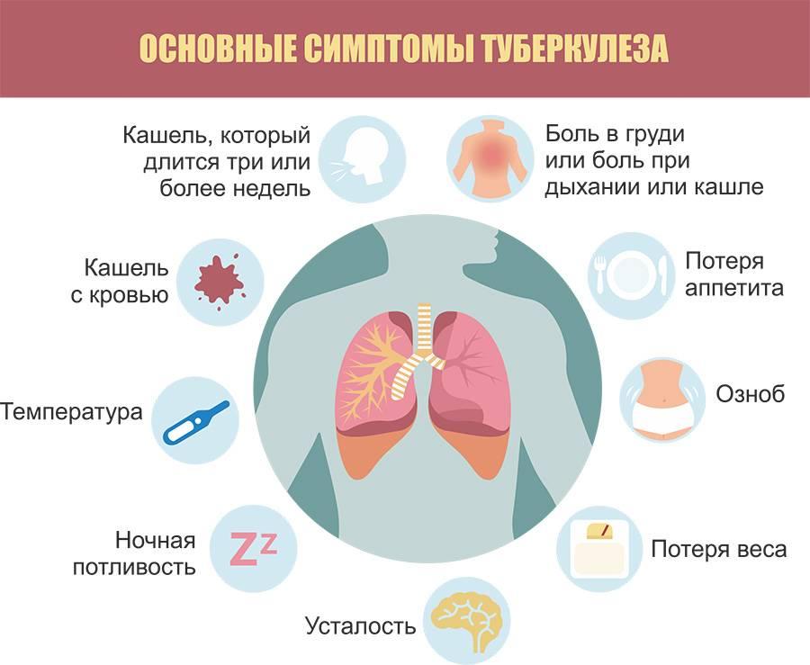 Как выявить туберкулез легких на ранней стадии: первые признаки и симптомы у взрослых