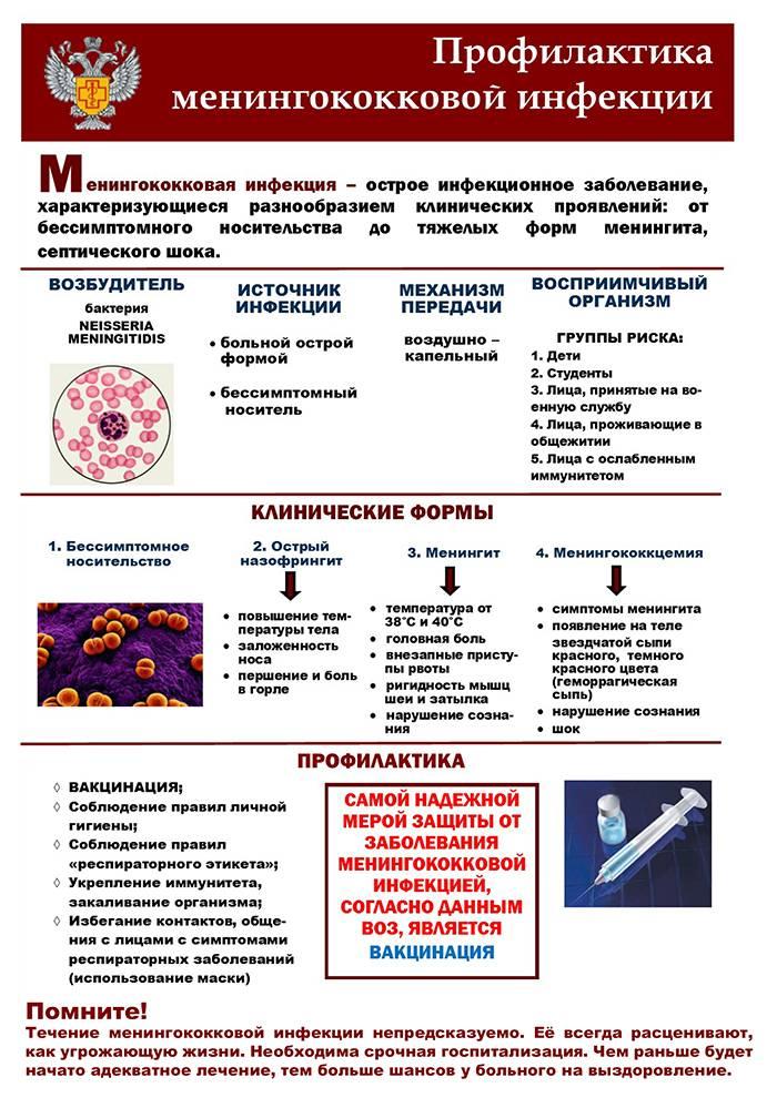 Менингококковая инфекция у детей: симптомы и лечение, профилактика, фото сыпи