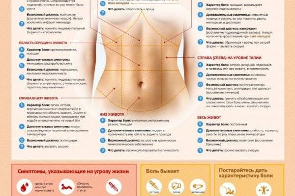 Боли в паху слева   что делать, если болит пах слева?   лечение боли и симптомы болезни на eurolab