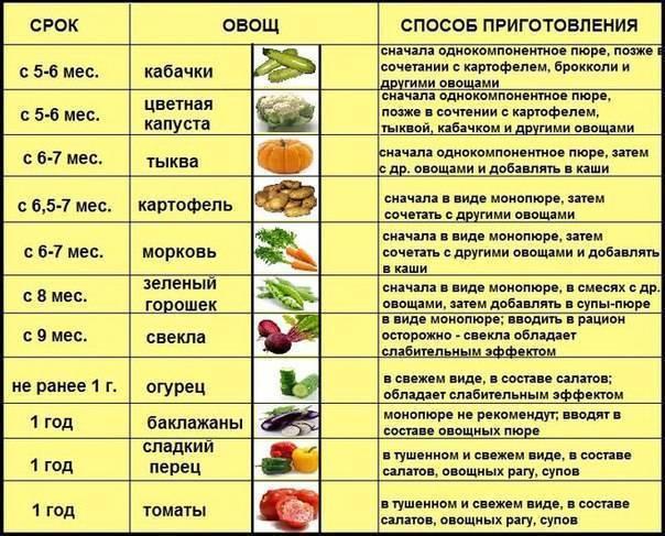 Кабачки при грудном вскармливании: влияние на здоровье и рецепты приготовления