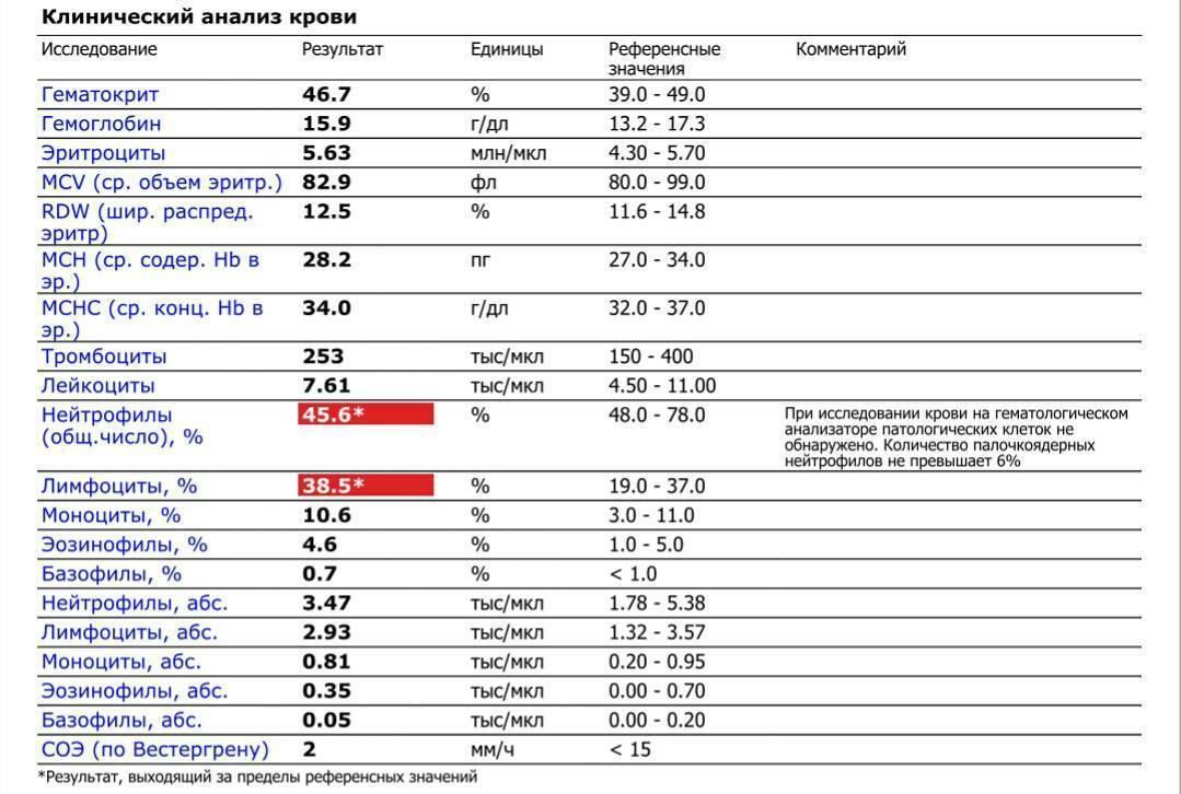 Анализ крови клинический: цена общего анализа крови в лаборатории днком
