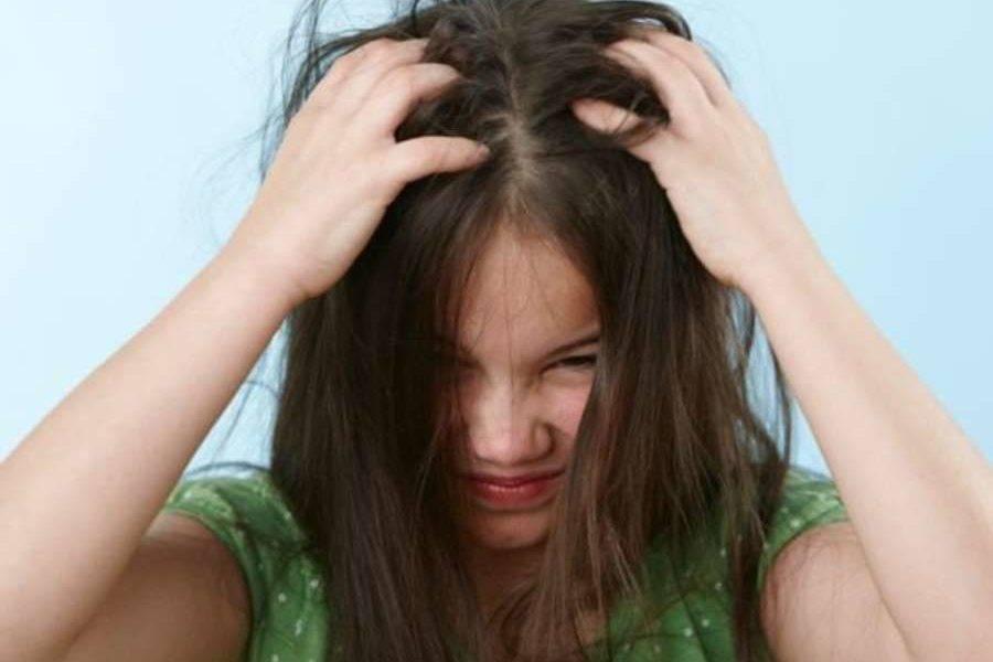 Что делать, если у кого-то в семье педикулез?