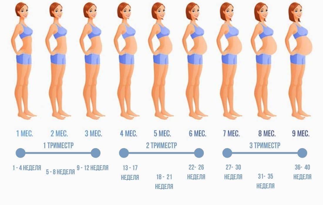 На каком сроке начинает шевелиться плод при первой и второй беременности