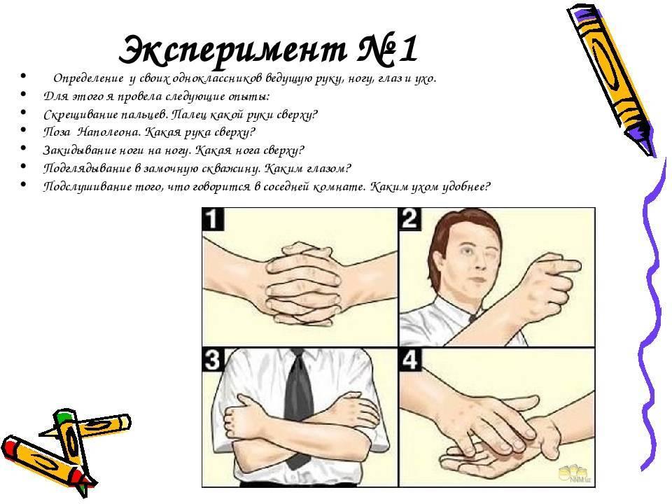 Как узнать, правша или левша: тесты для определения ведущей руки ребенка