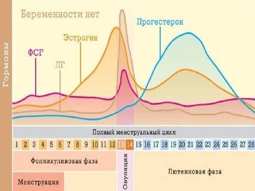 Синдром гиперстимуляции яичников