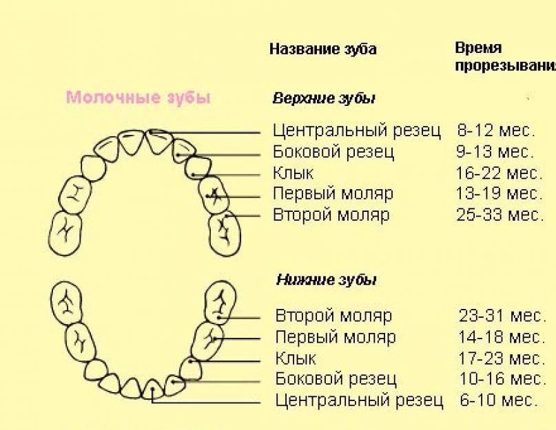 Обзор 5 лекарств при прорезывании молочных зубов, 3 наиболее частые проблемы