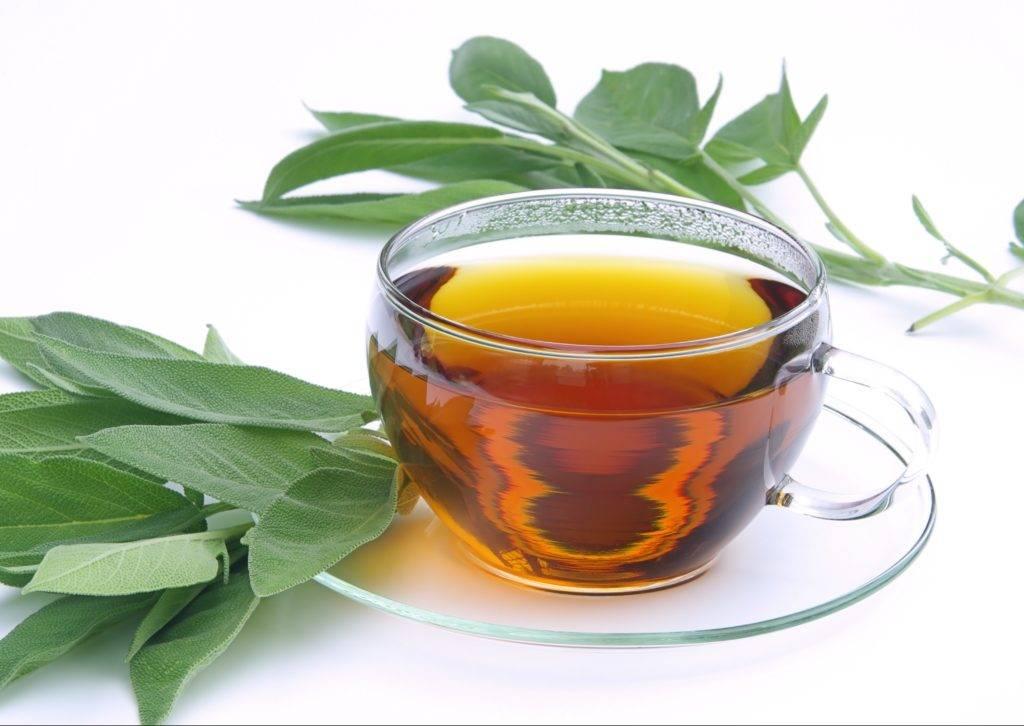 Лечение аднексита народными средствами   компетентно о здоровье на ilive