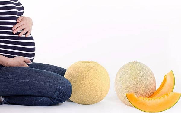 Можно ли употреблять тыкву при беременности и в каком виде?