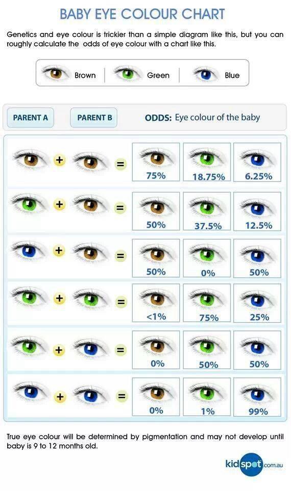 Когда начинается меняться цвет глаз у малышей. когда формируется окончательная окраска глазок. существуют определенные правила наследования.
