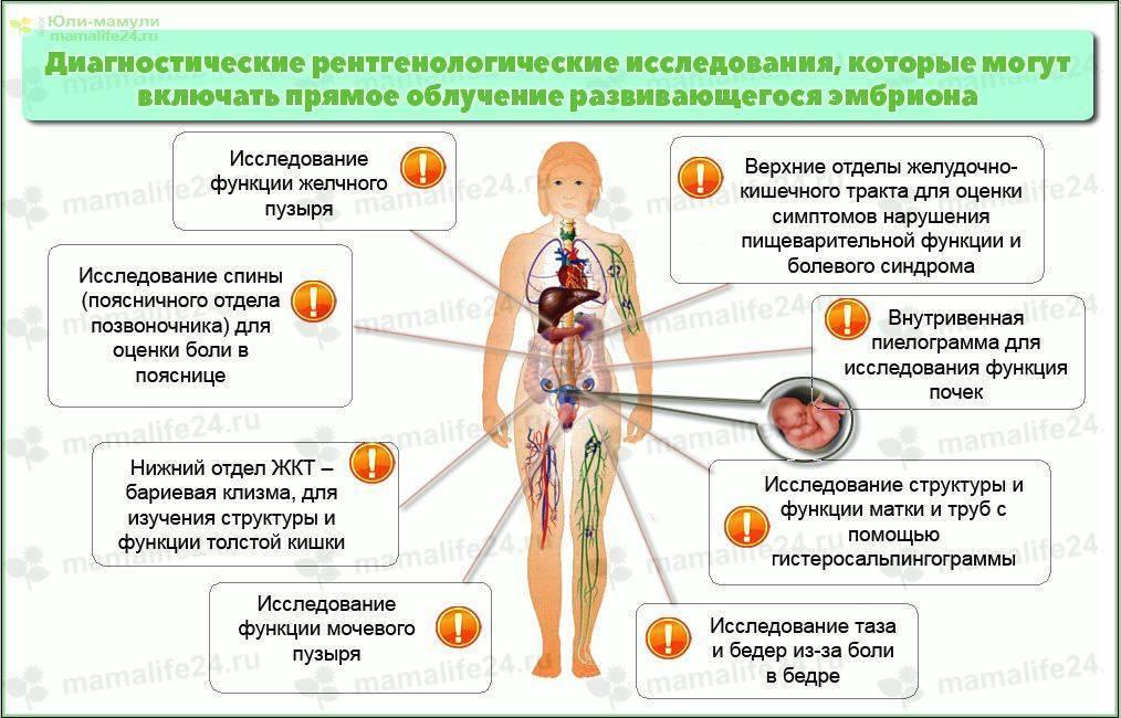Зачем флюорография мужа при беременности: вред рентгена