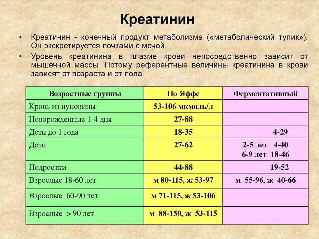 Причины повышенного и пониженного креатинина в крови у ребенка и норма показателей