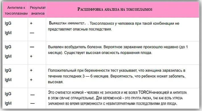 Торч (torch-инфекции)