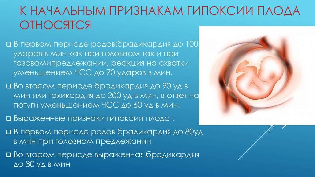 Брадикардия у плода на ранних и поздних сроках беременности: причины, симптомы, лечение