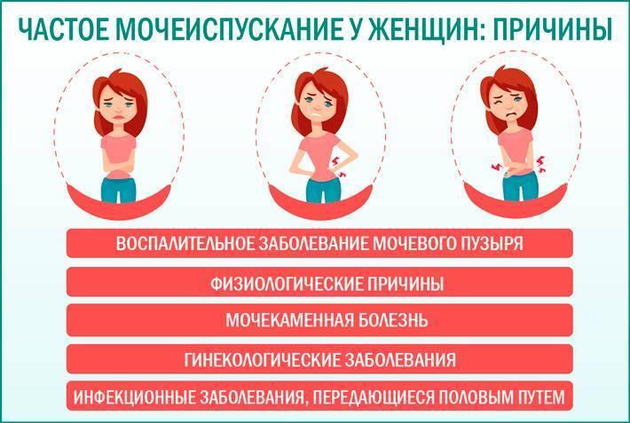 Редкое мочеиспускание у женщин, мужчин и детей: причины, лечение   компетентно о здоровье на ilive
