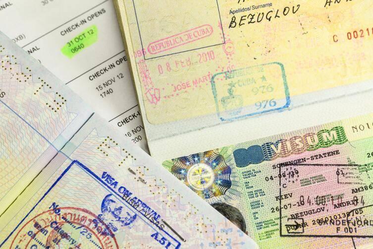 Какие документы нужны для получения и оформления шенгенской визы в 2020 году — перечень и список