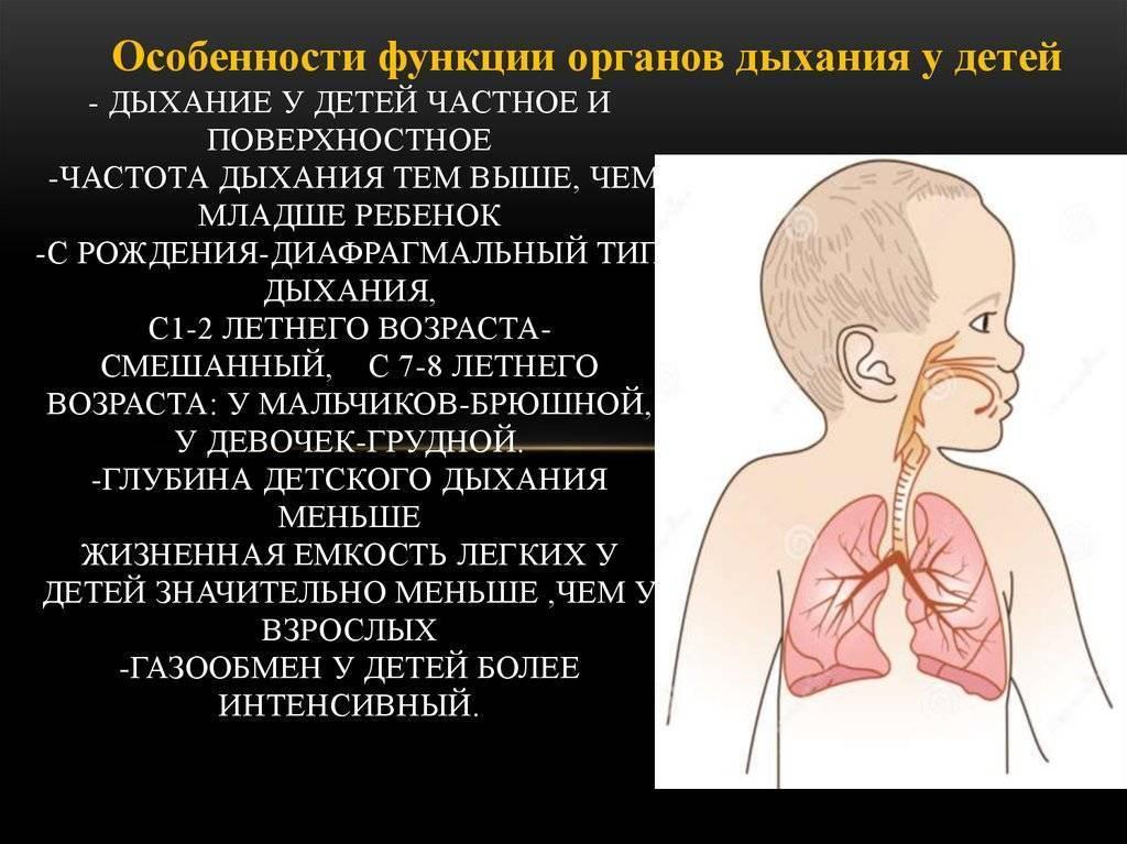7 причин затрудненного дыхания у детей или что делать, если ребёнку вдруг стало трудно дышать