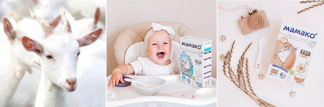 Молочные каши грудному ребенку: как правильно варить на козьем молоке грудничку