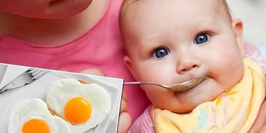 Введение желтка в детский рацион