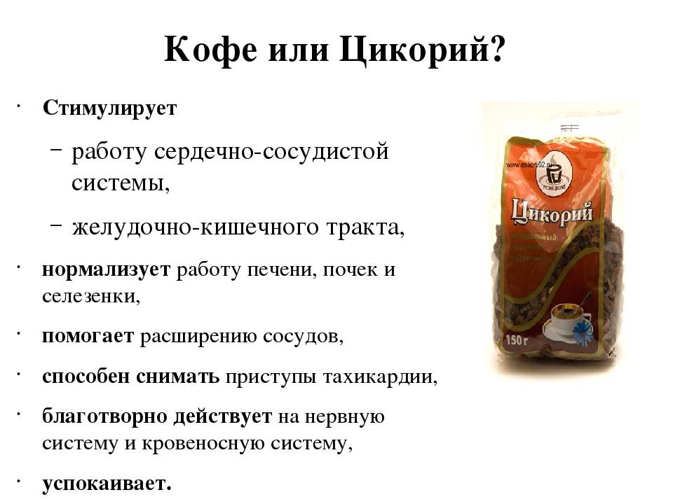 Цикорий: полезные свойства травы   food and health