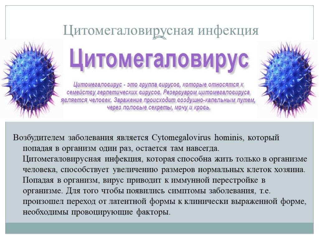 Human herpes virus 6, igg: исследования в лаборатории kdlmed