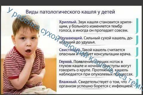 ➤ ребенок сильно кашляет во сне. как облегчить состояние ребенка?