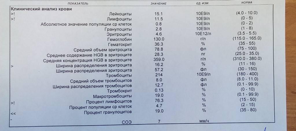 Эозинофилы в крови
