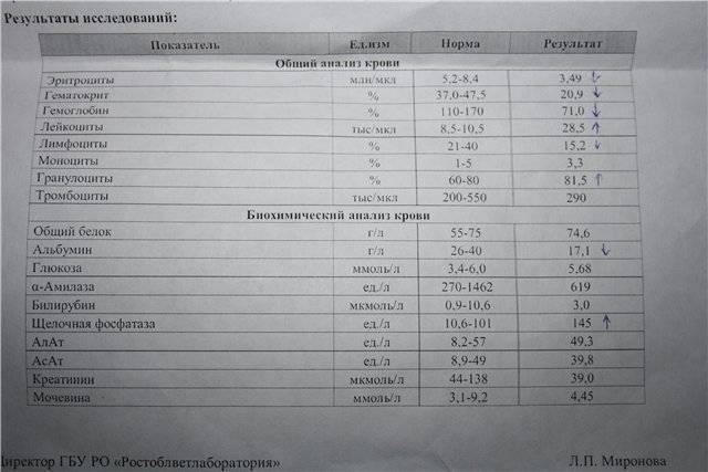 Щелочная фосфатаза. причины повышения щф. как снизить щф