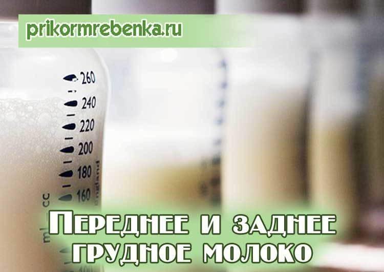 Состав и калорийность грудного молока
