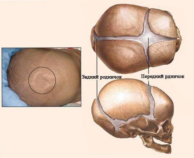 Пульсирует родничок у грудничка: нормально ли это?