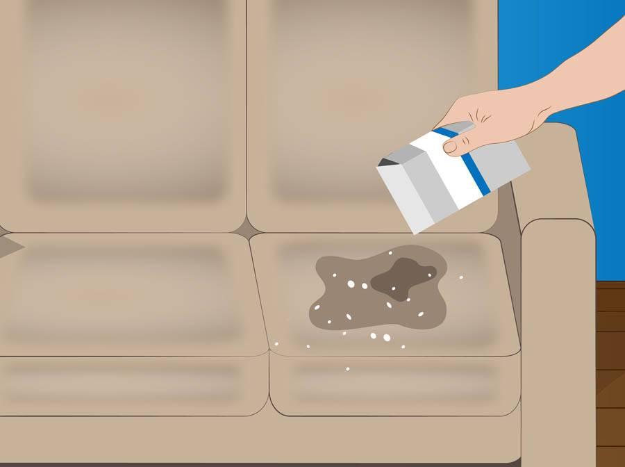 18 эффективных способов избавиться от запаха мочи на диване