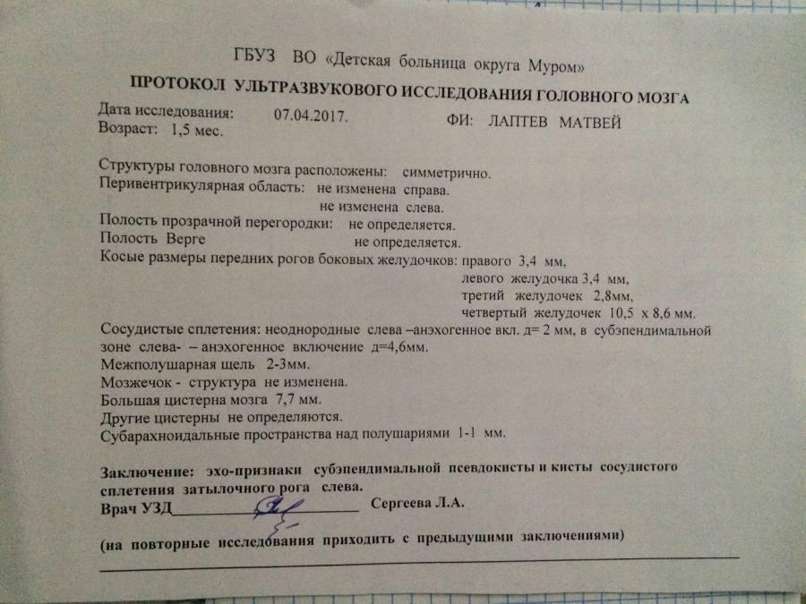 Нейросонография | компетентно о здоровье на ilive