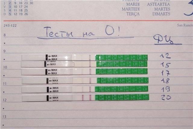 ᐉ что показывает тест на овуляцию при беременности. на какой день покажет результат? может ли у беременных быть положительным тест на овуляцию - ➡ sp-kupavna.ru