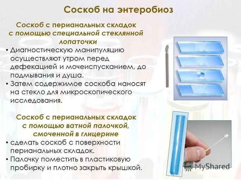 Энтеробиоз – инвазия острицами. причины, симптомы, диагностика и лечение энтеробиоза