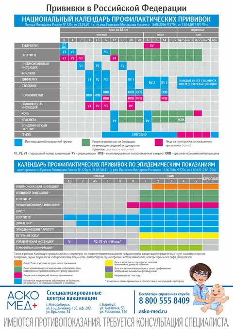 Календарь прививок для детей – что нужно знать родителям