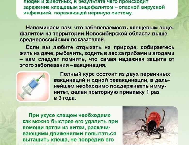 Антибиотики при укусе клеща человека: какие, инструкция по применению | компетентно о здоровье на ilive
