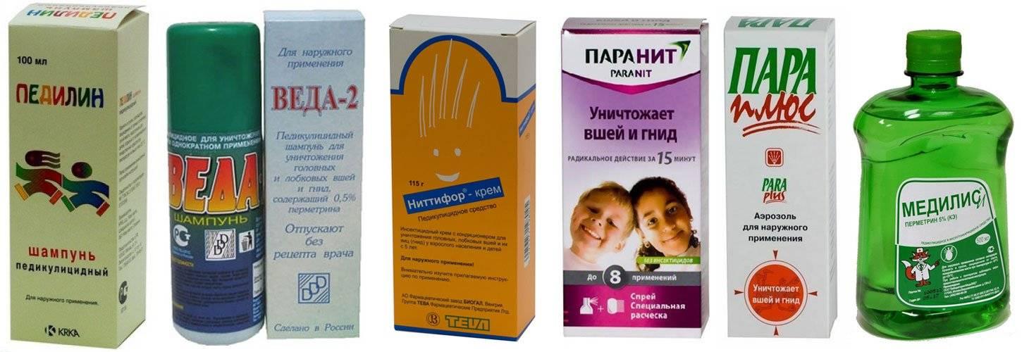 Вши у ребенка, взрослого: выбор средства от вшей, лечение педикулеза - напоправку – напоправку