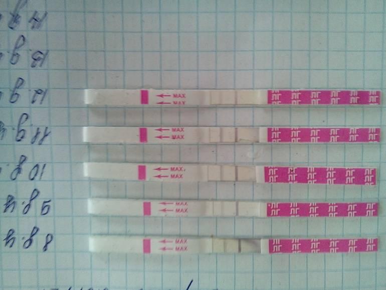Риск забеременеть во время менструации. каковы шансы? можно ли забеременеть в последний день менструации?