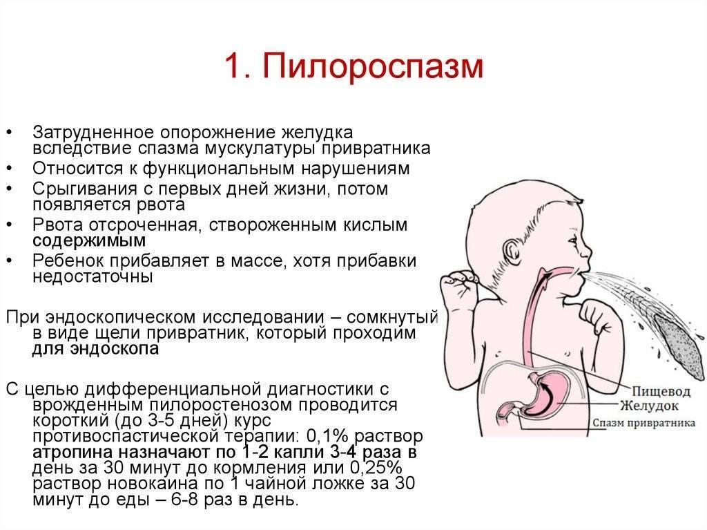 Срыгивание: причины, помощь ребенку - педиатрия на krasgmu.net