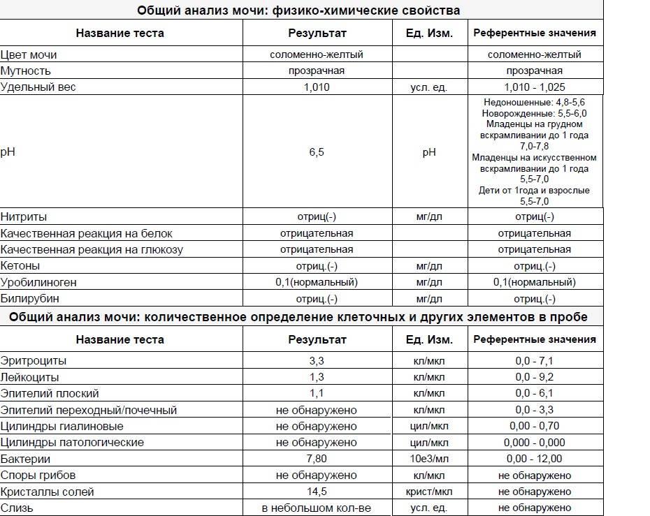 Эритроциты в моче у детей: диагностика при эритроцитах в моче у детей, осмотр уролога в москве
