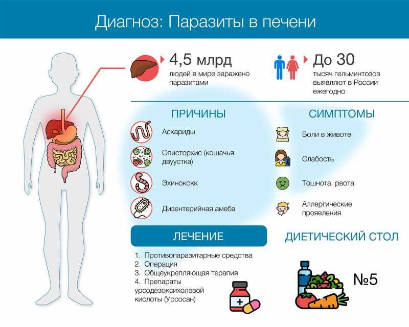 Гепатомегалия печени - признаки, причины, симптомы, лечение и профилактика - idoctor.kz