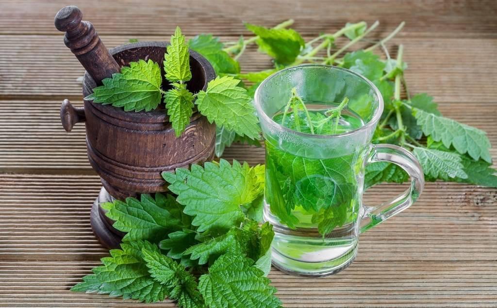 Народное лечение подагры : травы, грязи, гомеопатия   компетентно о здоровье на ilive